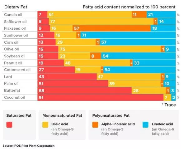 fat composition breakdown