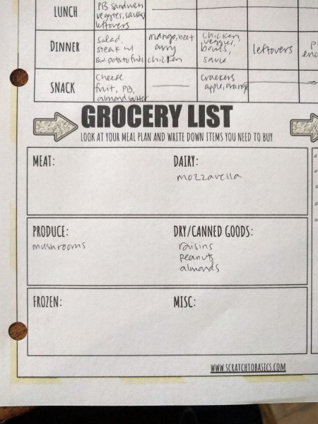 "Picture of the ""grocery list"" part of the template."