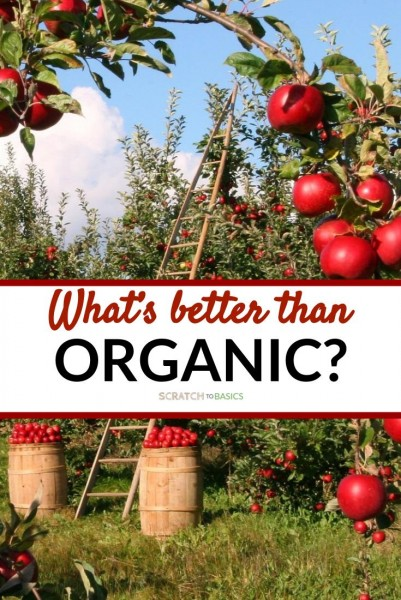 What's better than organic? With apples in background
