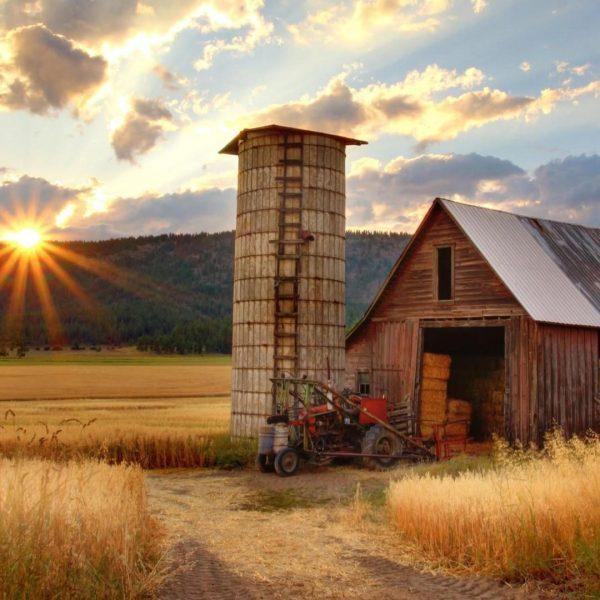 Sunrise over a farm