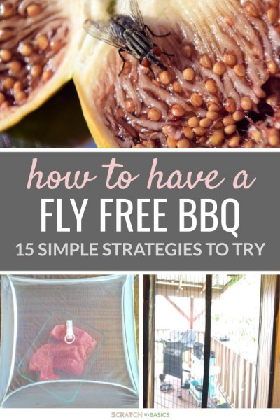 15 Extremely Easy Ways To Keep Flies Away From Your Food