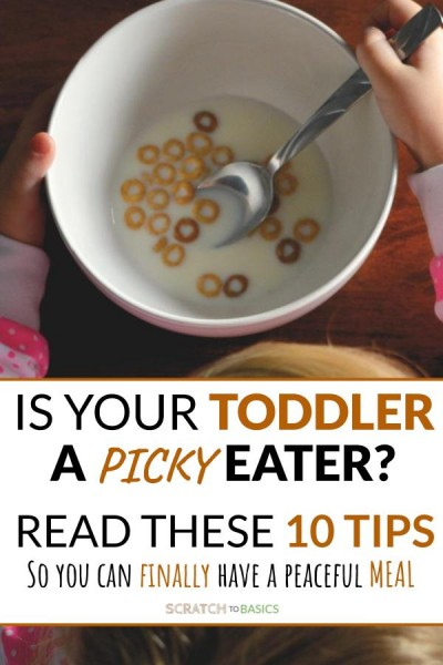 Is your toddler a picky eater? 10 tips to finally have a peaceful meal