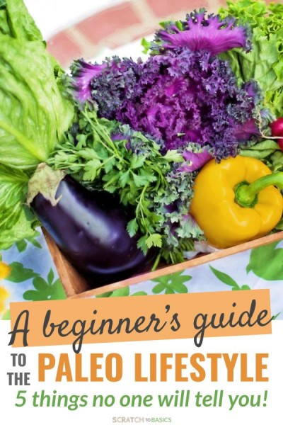 paleo diet for beginner - rules and tips