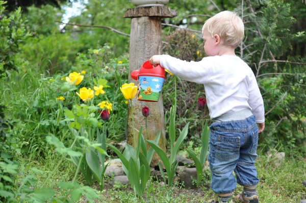 A kid celebrating Earth Day by watering some flowers.