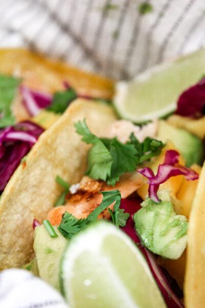 close up view of fish tacos with cabbage, avocado, mango, cilantro, and corn tortilla
