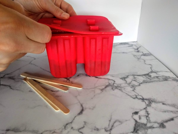 Put the lid on the popsicle mold.