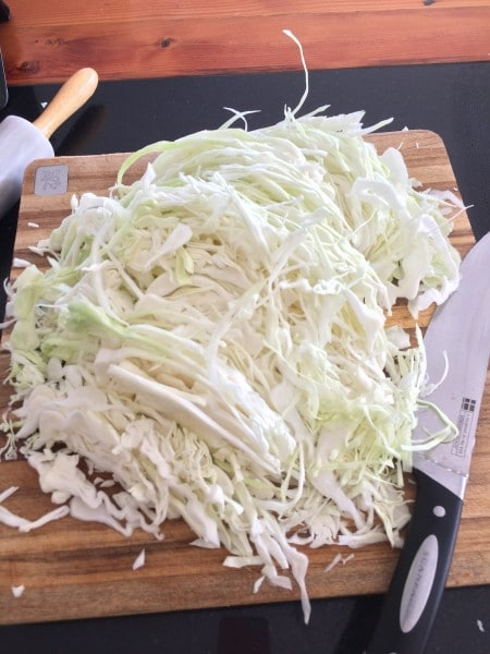 Sauerkraut is made of shredded cabbage.